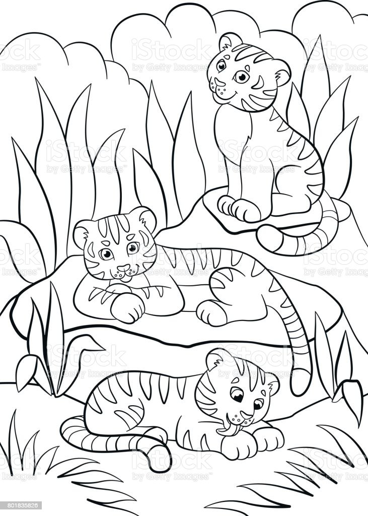 Coloring Tigers Coloring Pages