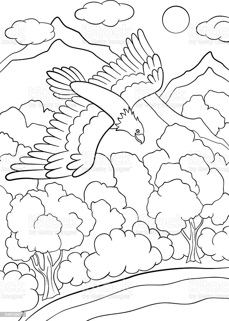 Flying eagle - Birds Adult Coloring Pages | 1024x731