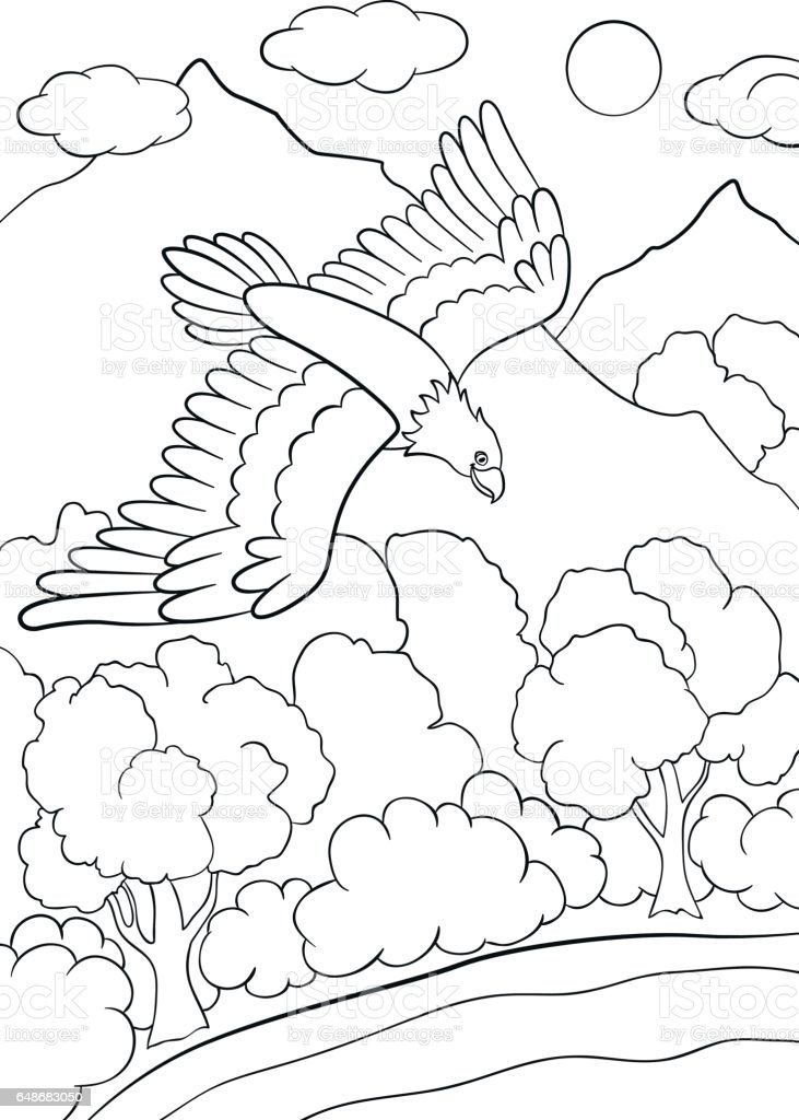 Kleurplaten Kleine Vogels.Kleurplaten Wilde Vogels Schattig Eagle Vliegen Onder Het Bos