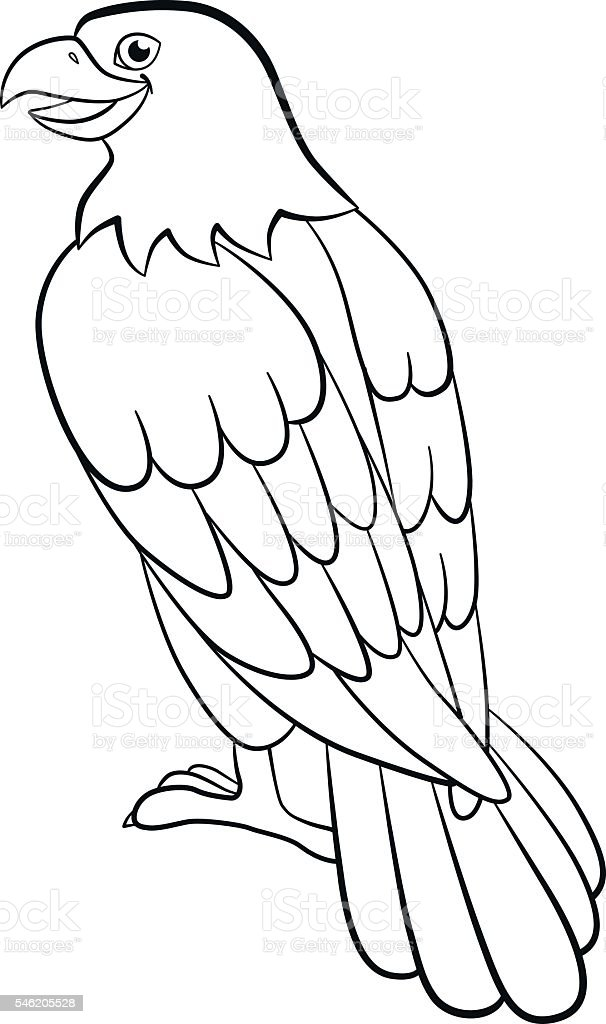 20 Cute Eagle Coloring Pages For Your Little Ones | Cartoon ... | 1024x606