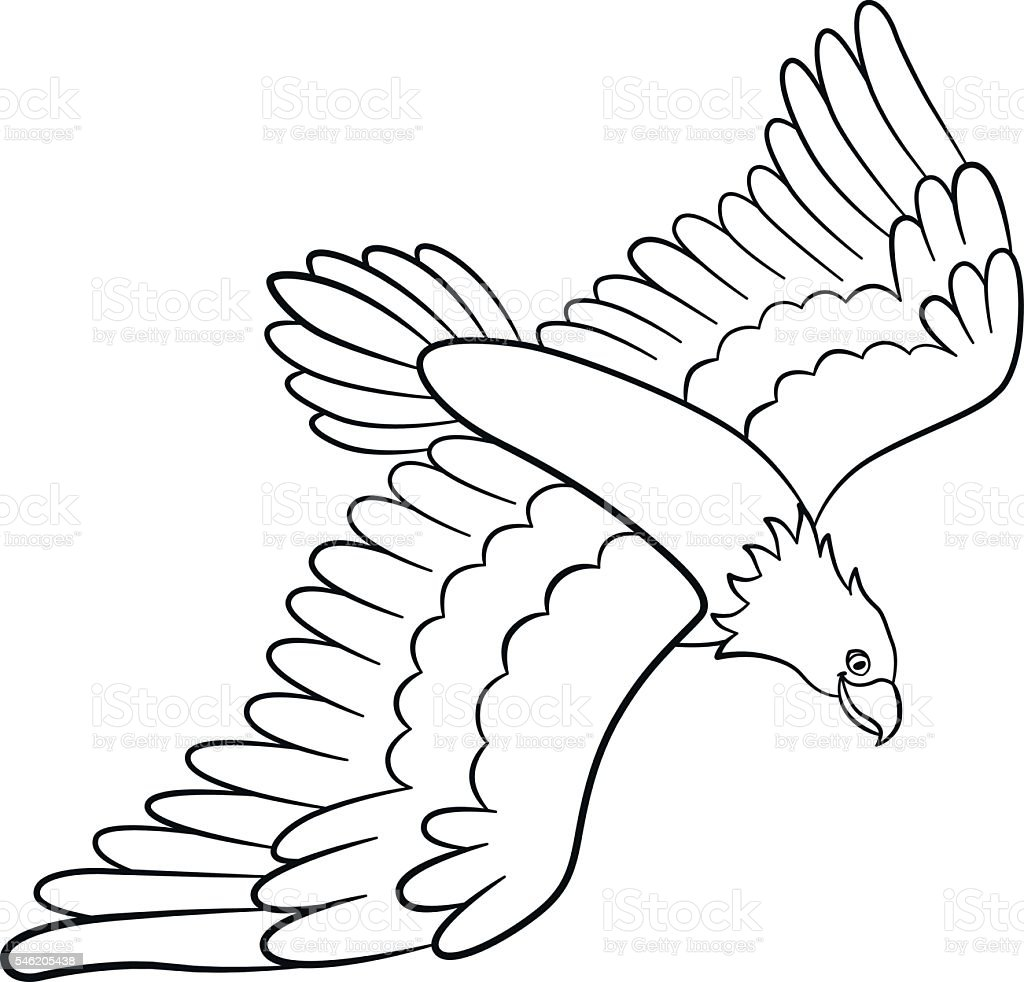Coloring Pages Wild Birds Cute Flying Eagle Smiles stock vector ...