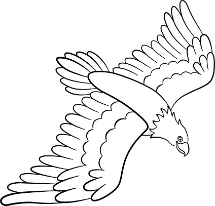 Coloring Pages Wild Birds Cute Flying Eagle Smiles Stock ... - photo#9
