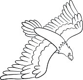 Coloring pages. Wild birds. Cute flying eagle smiles.