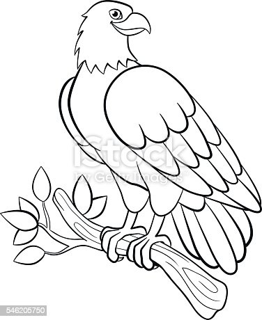 Coloring Pages Wild Birds Cute Smiling Eagle Stock Vector