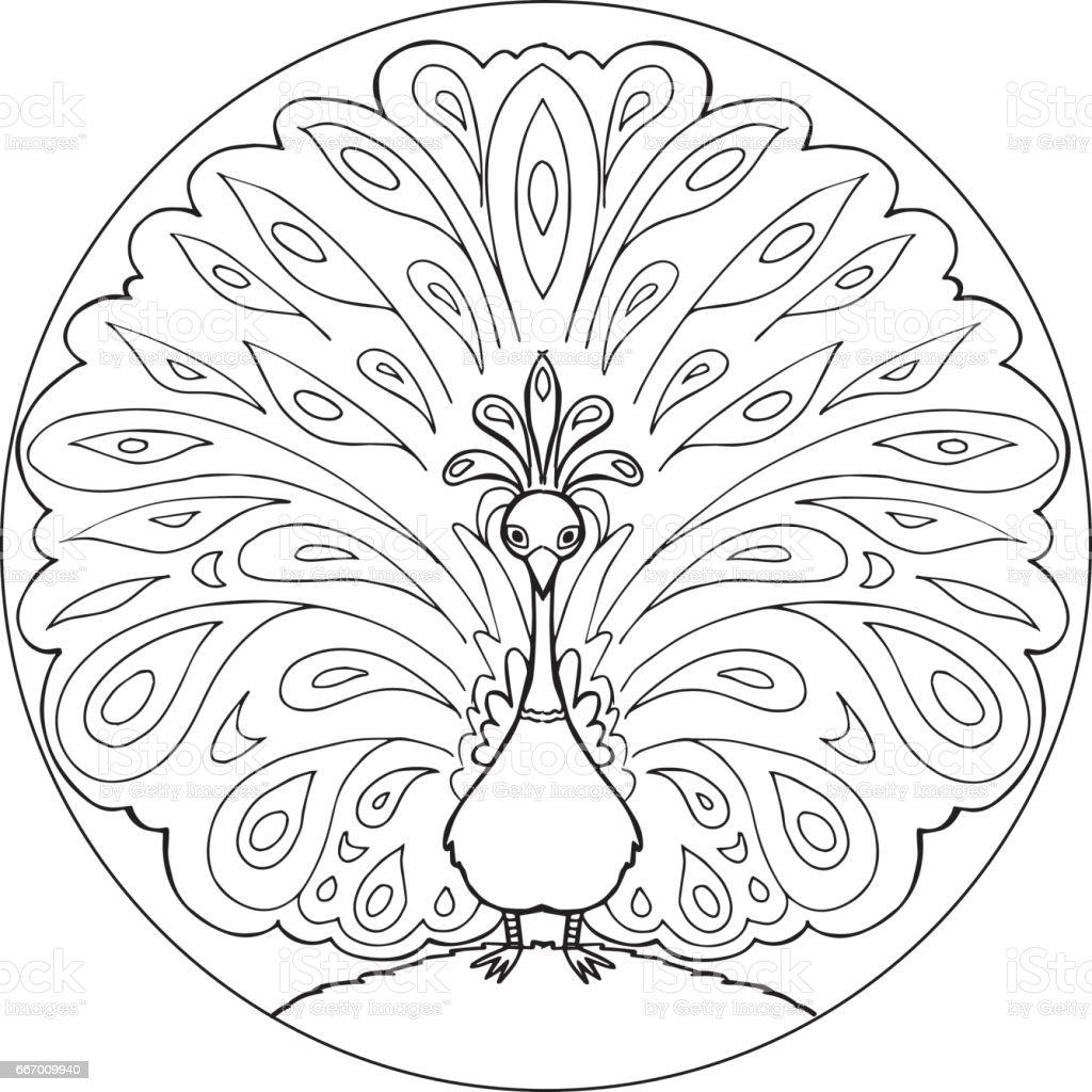 Färbung Pfau Mandala Vektor Stock Vektor Art Und Mehr Bilder Von