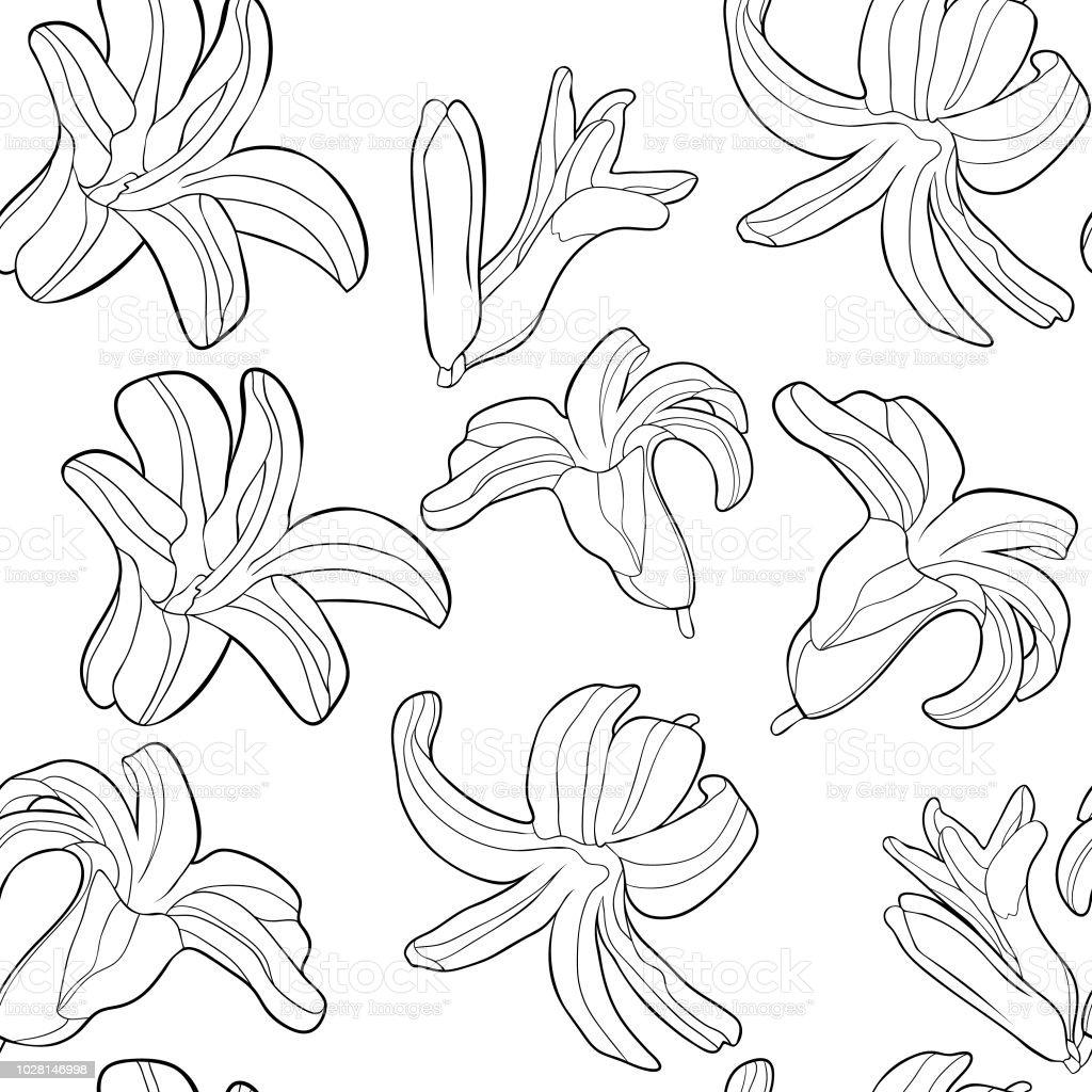 Coloriage Motif Sans Soudure Est Fleur Printanière Hyacinthe