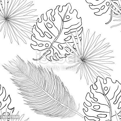 Ilustración de Hojas De Colorear Palmera Tropical Natural De ...