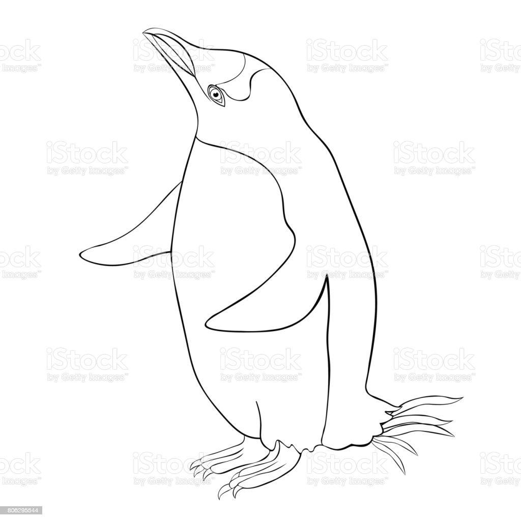 Kleurplaten Dieren Pinguin.Kleurplaat Subantarctic Een Pinguin Papoea Denken Vectorillustratie