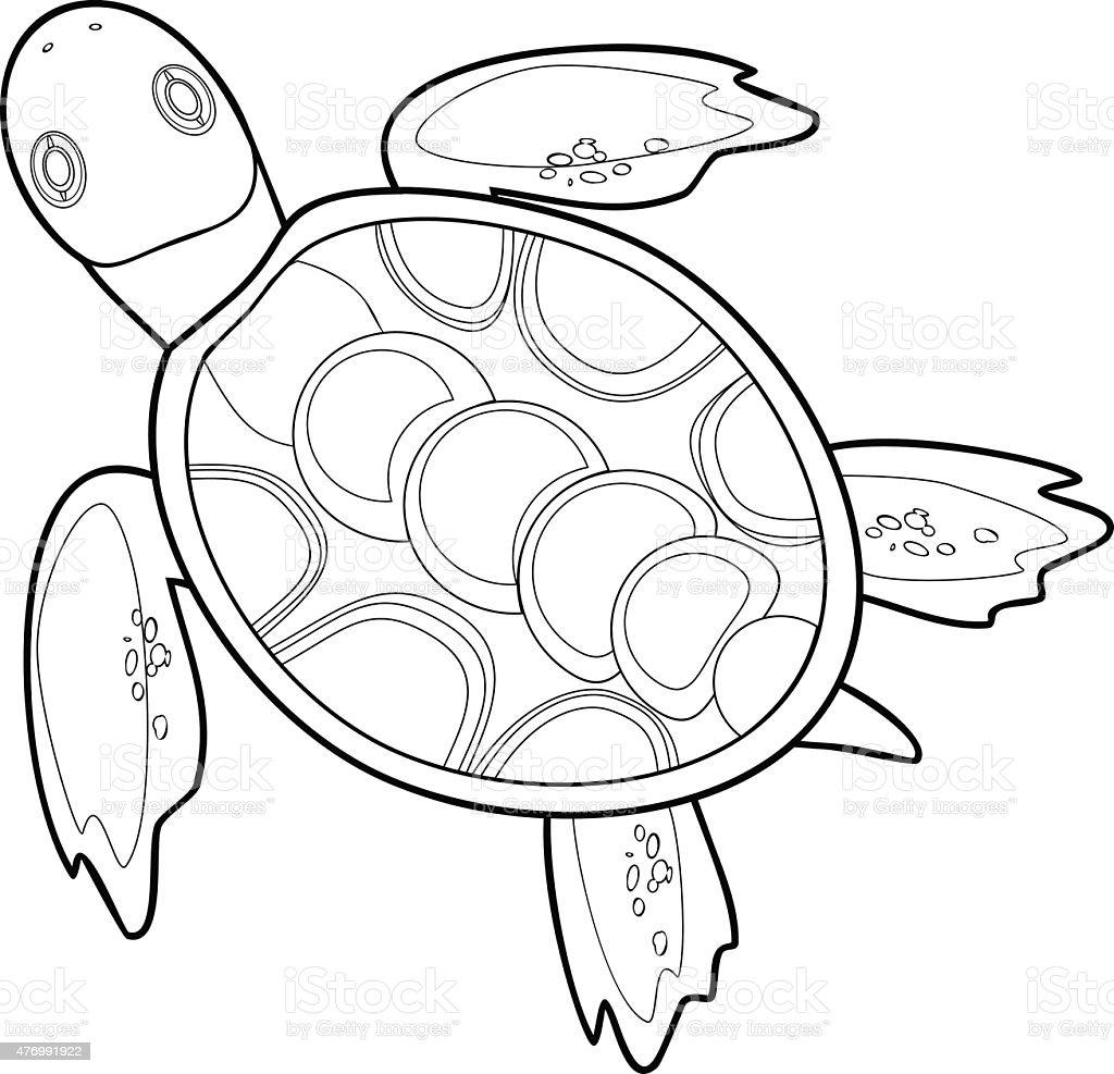 coloriage avec tortue de mer gm