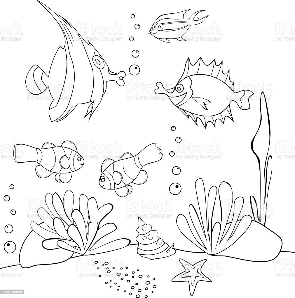 Da colorare con pesci tropicali immagini vettoriali for Immagini di pesci da disegnare