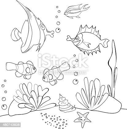 Da colorare con pesci tropicali immagini vettoriali for Disegni da colorare pesci tropicali