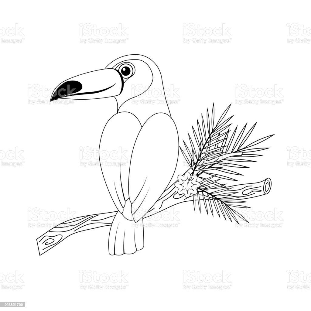 Ilustración De Tucán De Dibujos Animados Gracioso Incoloro