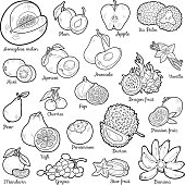Colorless set with tropical fruits, vector cartoon stickers