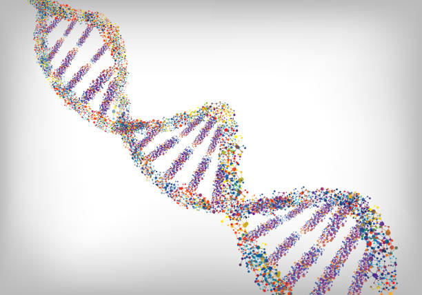 DNA colourful background. Vector vector art illustration