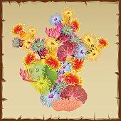 Colourful bush corals and polyps, single object
