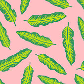 Colourful tropical background design