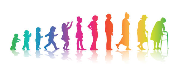 Colourful Women's Ages Aging process in humans from baby to old age in rainbow colours sequential series stock illustrations