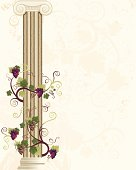 Column Grape Vine