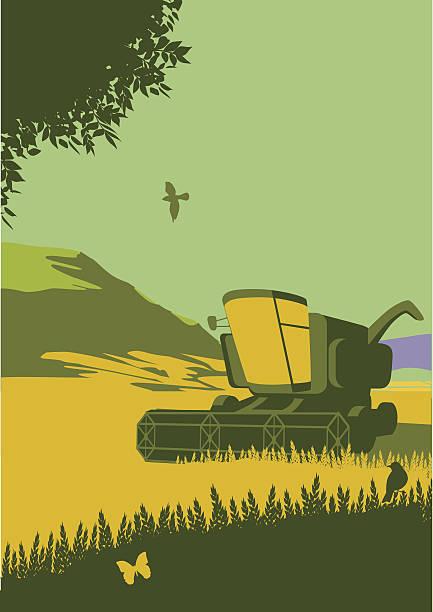 stockillustraties, clipart, cartoons en iconen met combine harvester in countryside - wheat field