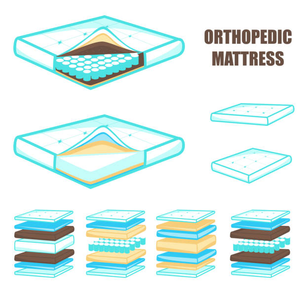 illustrations, cliparts, dessins animés et icônes de ensemble de matelas orthopédique confortable en couches, illustration vectorielle - matelas