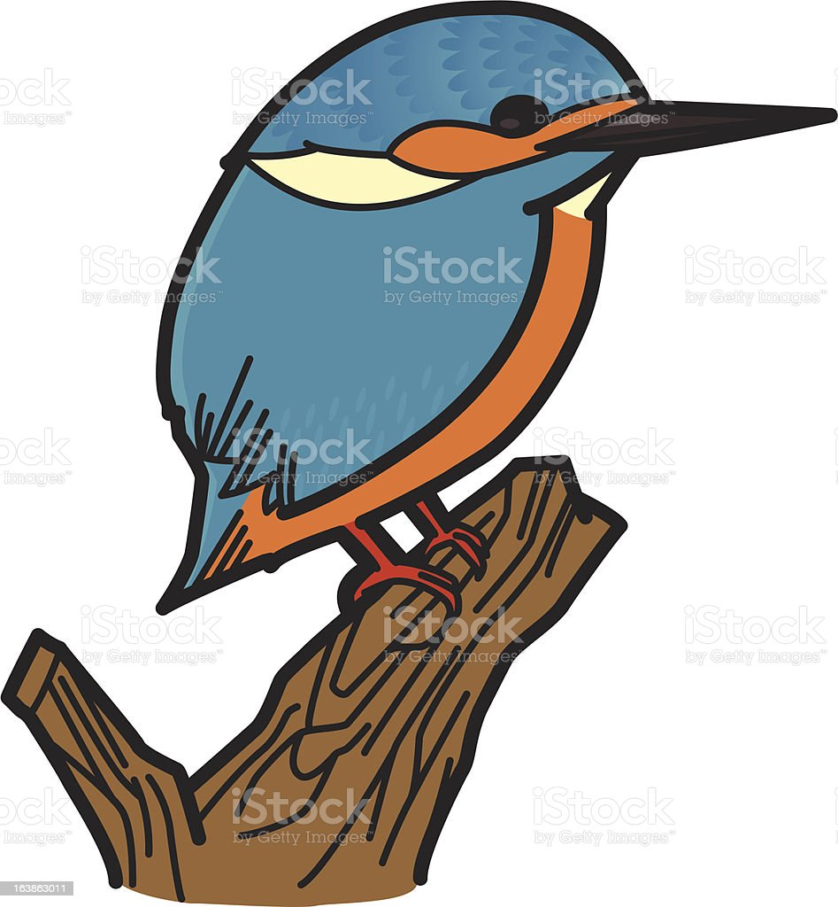 Common Kingfisher royalty-free stock vector art