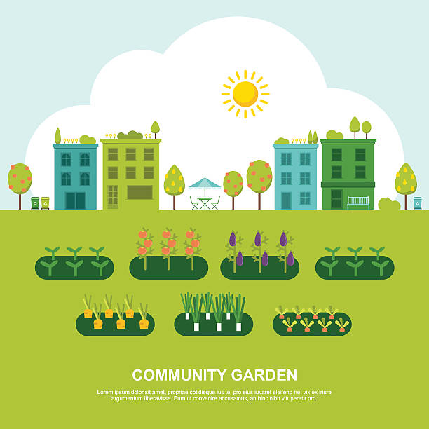 Community Fruit and Vegetable Garden Colorful vector illustration of community garden in modern flat design. Easy to edit, elements are grouped, no effects. community garden stock illustrations