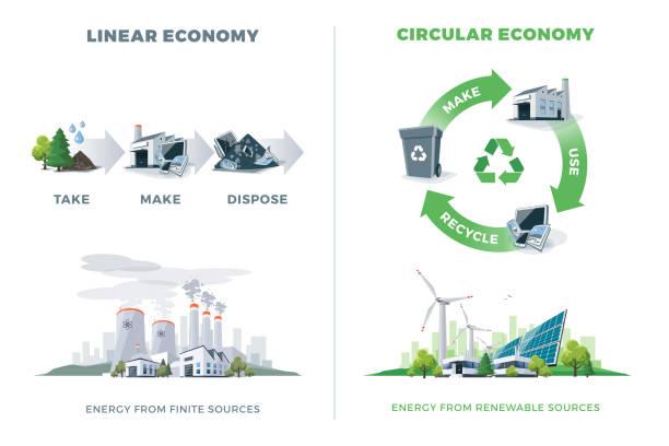ilustrações, clipart, desenhos animados e ícones de comparando a economia circular e linear - economia