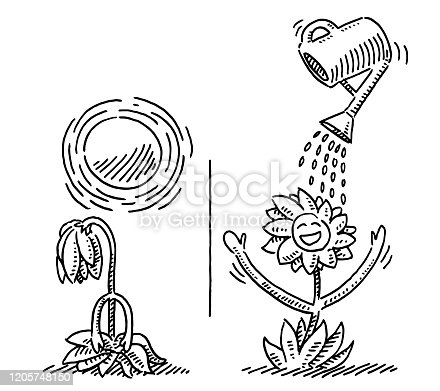 Hand-drawn vector drawing of a Comparison of a Cartoon Flower during Aridity And Watering. Black-and-White sketch on a transparent background (.eps-file). Included files are EPS (v10) and Hi-Res JPG.