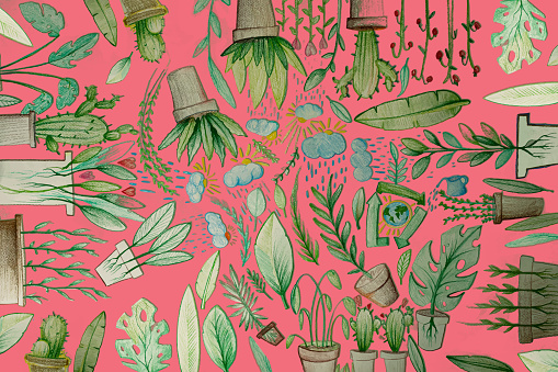 Composition of potted plants