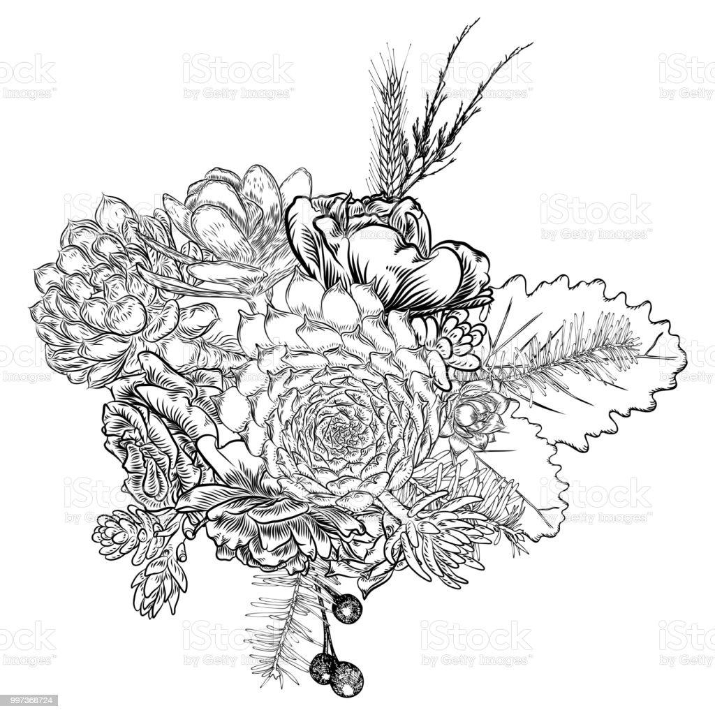 Succulents Kaktüs Yeşil Bitkiler çizim Botanik Bileşimi Siyah Beyaz