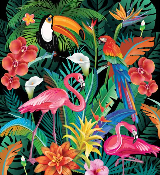 ilustrações de stock, clip art, desenhos animados e ícones de composition of tropical flowers and birds - arara