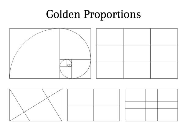 composition proportion guidelines - сетка фибоначчи stock illustrations