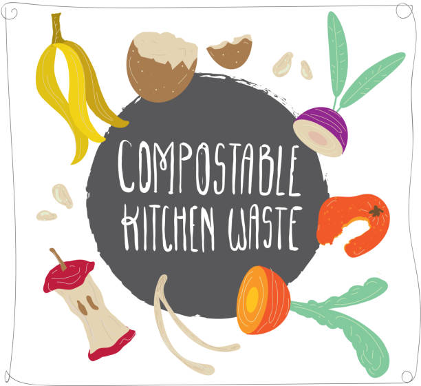 compostable kitchen waste compost with hand drawn food scraps - composting stock illustrations