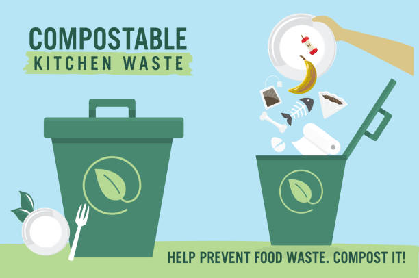 Compostable Kitchen Waste upcycling infographic with icons vector art illustration