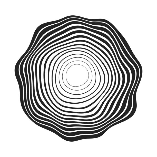 illustrazioni stock, clip art, cartoni animati e icone di tendenza di concentric black wavy lines that makes a rounded abstract organic shape - motivo concentrico
