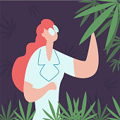 Concept grow cannabis, cultivation, production cbd . Professional worker in lab coat or pharmacist research, analyzing and checking plant hemp.