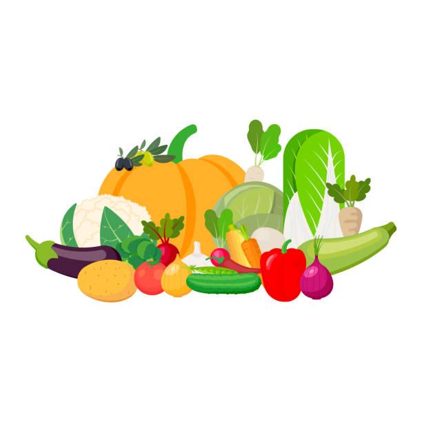 konzept gesunde seises essen isoliert auf weißem hintergrund. vektor-illustration. - karotte peace stock-grafiken, -clipart, -cartoons und -symbole