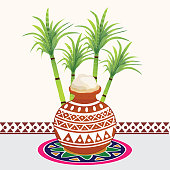 Concept of celebrating Happy Pongal.