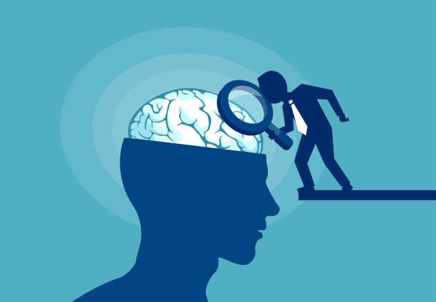 bildbanksillustrationer, clip art samt tecknat material och ikoner med begreppet mänskliga hjärnan under prövning - brain magnifying