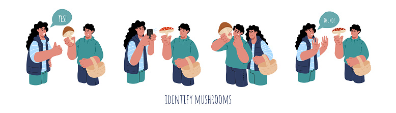 Concept of identify the mushroom.A couple trying to identify mushroom edibility with mobile phone.Vector flat illustration