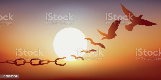 Concept of liberation with a dove escaping by breaking its chains of vector id1138883564?b=1&k=6&m=1138883564&s=612x612&h=2qfc oci9uf6dn0talzgmxdmhbvftp3qgmal5xto8jy=