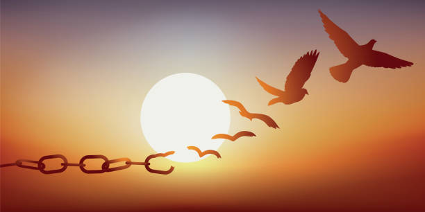 concept of liberation with a dove escaping by breaking its chains, symbol of prison. - optimistic stock illustrations