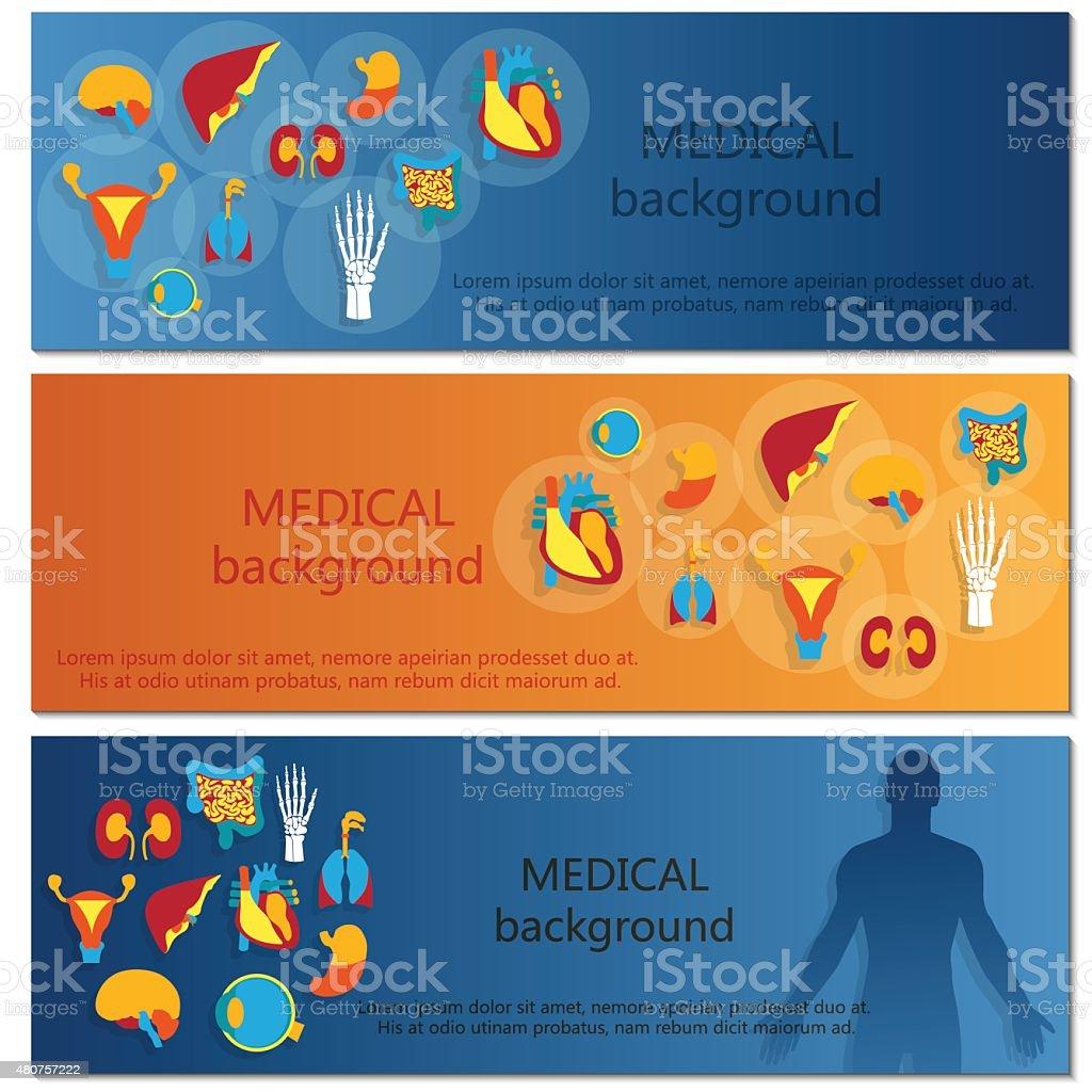 Concepto De Banner Web Medical Backgroundhuman Anatomía - Arte ...