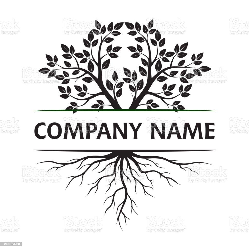 Concepto con hojas y raíces. Ilustración de vector. Nombre de la empresa, texto y la idea. Plantas y jardín. - ilustración de arte vectorial