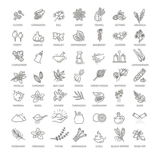 zestaw ikon przypraw. zestaw konspektów ikon wektorowych przypraw - liść mięty przyprawa stock illustrations