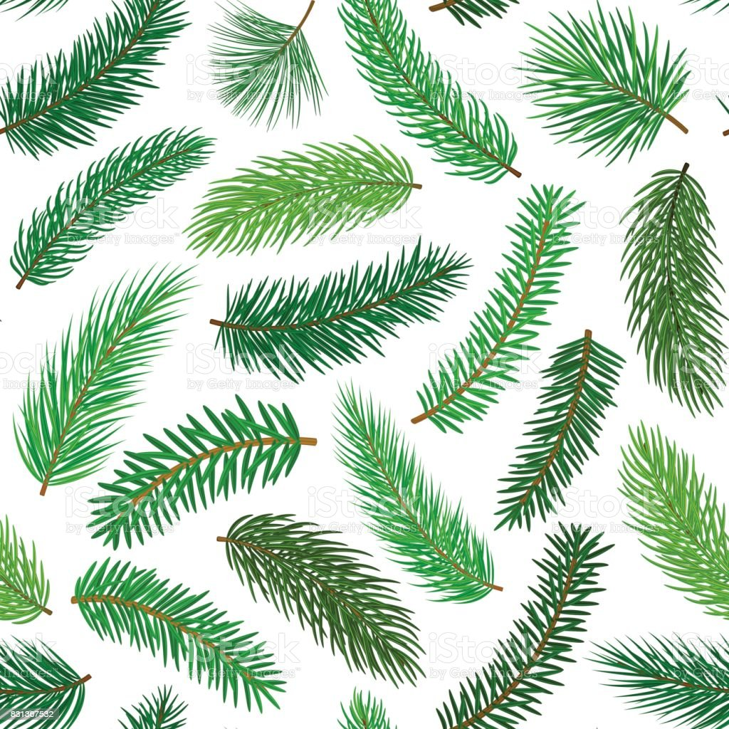 conifer evergreen pine fir cedar needle branches twigs seamless pattern vector art illustration