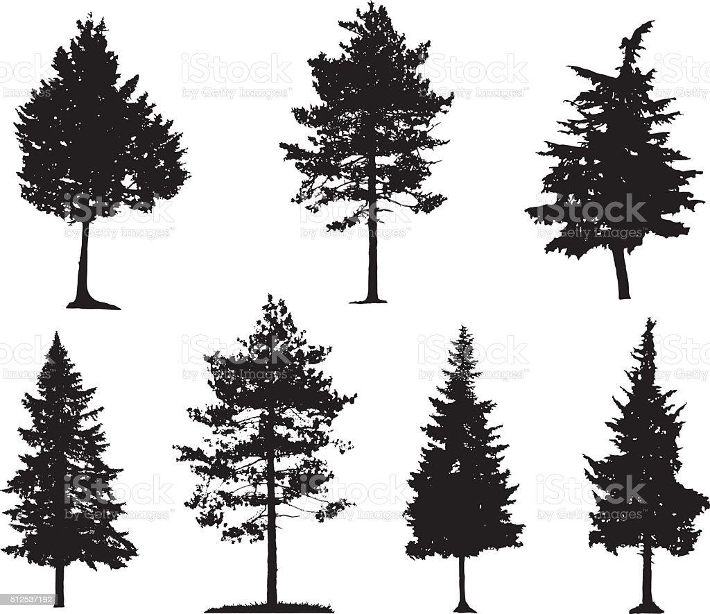 Nadelbäumen aus Silhouetten – Vektorgrafik
