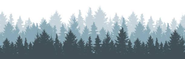 bildbanksillustrationer, clip art samt tecknat material och ikoner med barrskog vinter bakgrund. natur, landskap. tall, gran, julgran. dimma vintergröna barrträd. silhouette vektor illustration - forest
