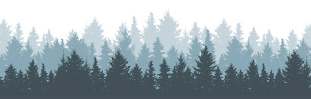 Coniferous winter forest background. Nature, landscape. Pine, spruce, christmas tree. Fog evergreen coniferous trees. Silhouette vector illustration Coniferous winter forest background. Nature, landscape. Pine, spruce, christmas tree. Fog evergreen coniferous trees. Silhouette vector illustration backgrounds silhouettes stock illustrations