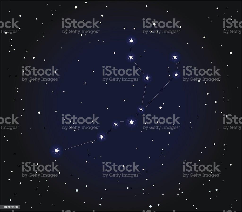 Constellation Aquarius vector art illustration